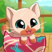 Play My Pocket Pets: Kitty Cat Game Online
